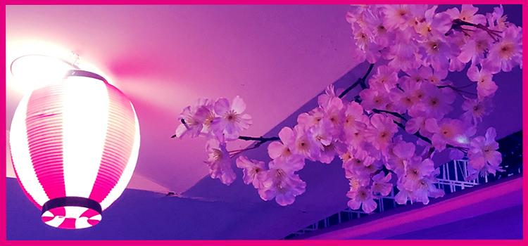 【店舗情報】AIR COLORS お花見イベント内装